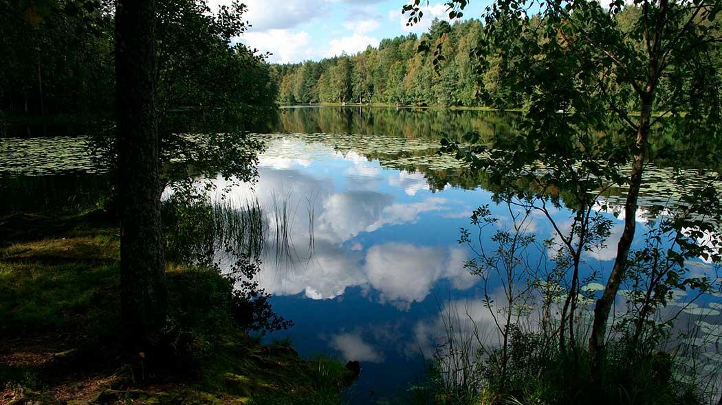 Haukkalampi pond. Photo: Meri Marttinen.