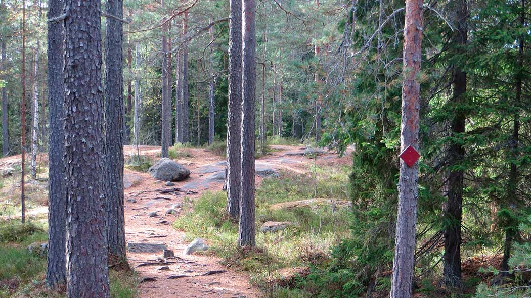 Punarinnankierros Trail. Photo: Laura Lehtonen.