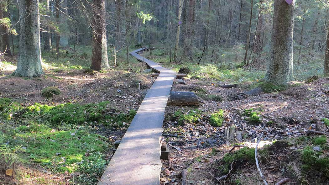 Klassari kierros trail. Photo: Laura Lehtonen.