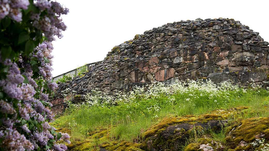 I terrängen vid ruinerna blommar både syrener och vårens blommor.