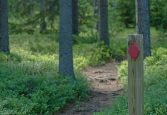 Metsässä polku, jonka vieressä on reittipaalu.